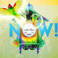 NOW! Festival